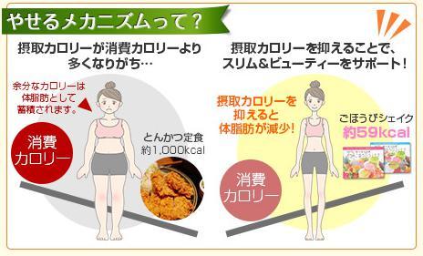 痩せるメカニズム.jpg